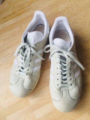 Adidas Originals Basket à lacet vert pâle cuir