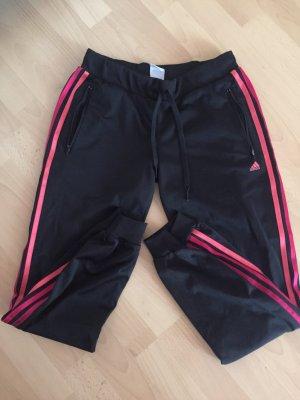 Adidas Jogginghose / Sporthose