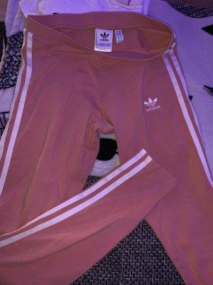 Adidas Leggings, Nike Shirt und Adidas Jacke