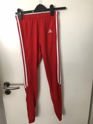 Adidas Leggins Hose