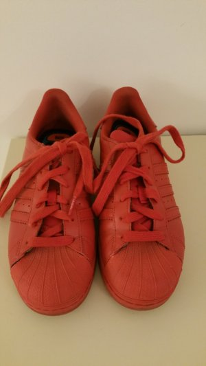 Adidas Original Superstar Supercolor  Pharell Williams in rot