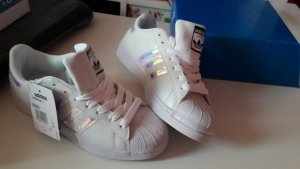 Adidas Originals Superstar Regenbogen
