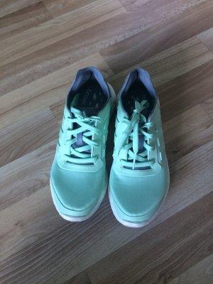 Adidas Pureboost Türkis
