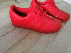 Adidas Skater Shoes red