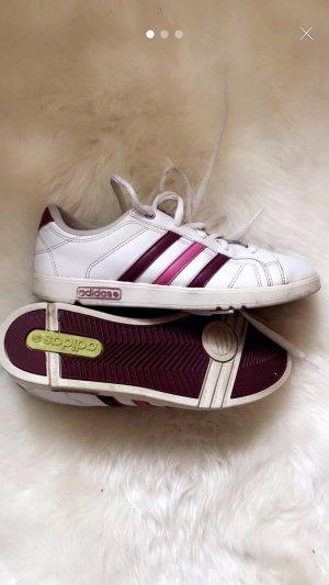 Adidas Schuhe Gr.38