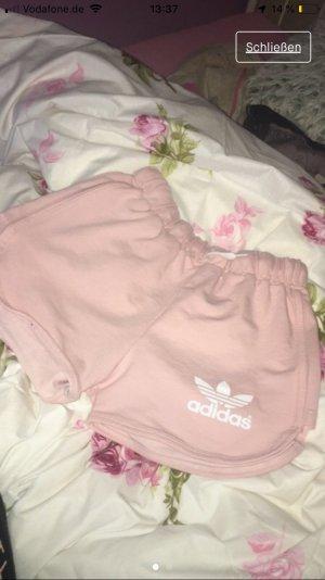 Adidas Sport Shorts dusky pink