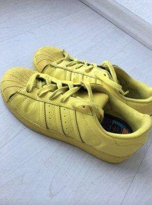 Adidas Sneaker 38 2/3 gelb Superstar