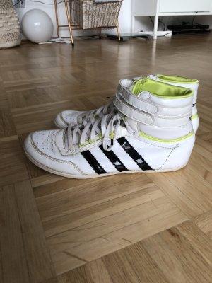 Adidas Sneaker, Gr. 40