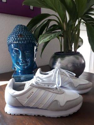 Adidas Sneaker Haven