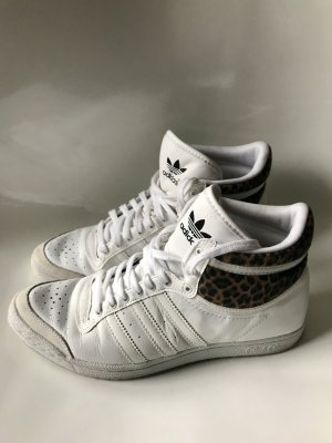 Adidas Special Collection