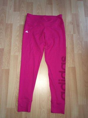Adidas Sport Tights Leggings Pink Neu