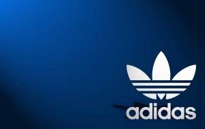 Adidas Sporthose, gehört zum Oberteil (s. meine änder Produkte)