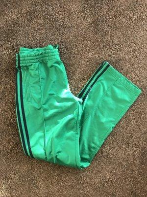 Adidas Sporthose grün