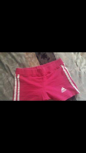 adidas sportshorts im rosa