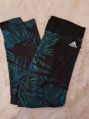 Adidas Originals Trackies black-petrol