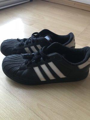 Adidas Super Stars Gr. 36 2/3