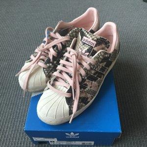 Adidas Basket à lacet multicolore cuir