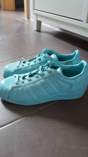 Adidas Zapatilla brogue azul claro