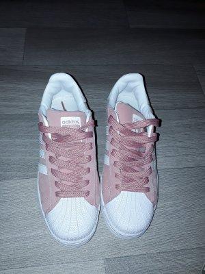 adidas superstar in rose