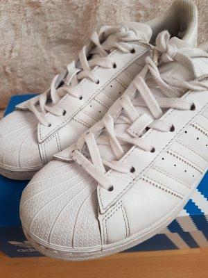 Adidas Superstar in Weiß in Größe 38