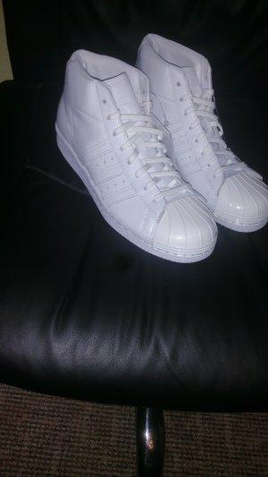 Adidas Basket montante blanc