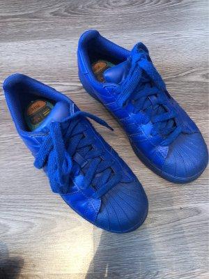 Adidas Superstar Pharell Williams