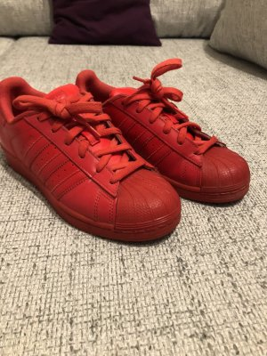 Adidas Superstar rot