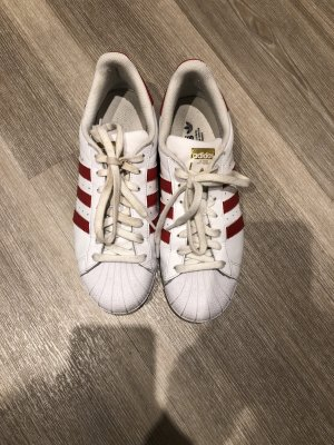 Adidas Superstar Sneaker in Rot
