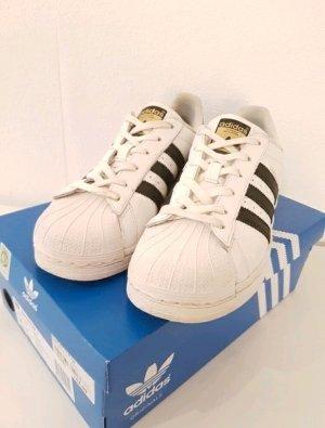 Adidas Superstars Gr.38