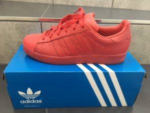Adidas Superstars in rot