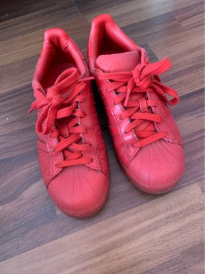 Adidas superstars rot