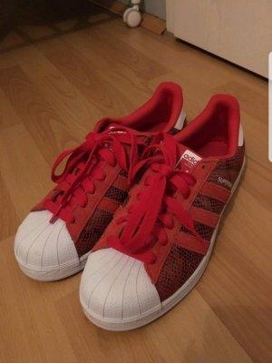 Adidas Superstars rot Gr.40,5