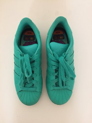 Adidas Superstars Supercolor by Pharell Williams