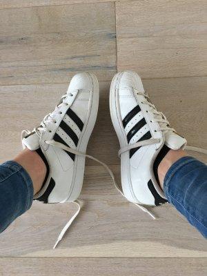 Adidas SUPERSTARS weiß schwarz 38 (zweidrittel)