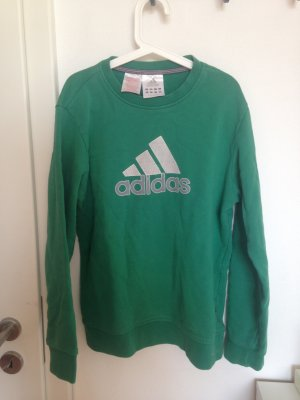 Adidas Sweatshirt in Grün