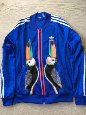 Adidas Giacca sport blu