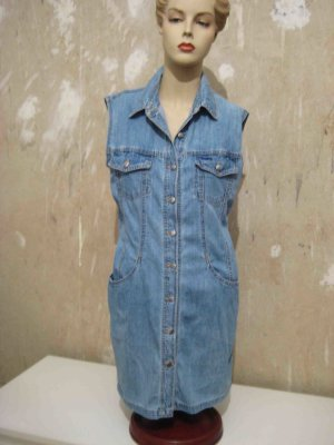 Angels Denim Dress blue