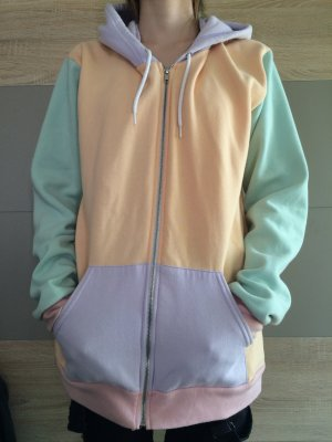 American Apparel Colorblock Zip Hoodie