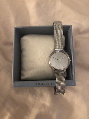 Skagen Watch With Metal Strap silver-colored
