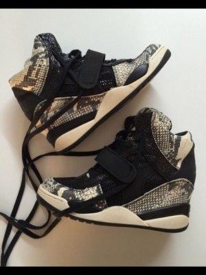 ASH Sneaker nero-oro