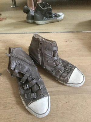 ASH Sneakers grey brown-cream leather