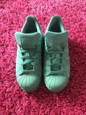 Adidas Basket à lacet vert menthe