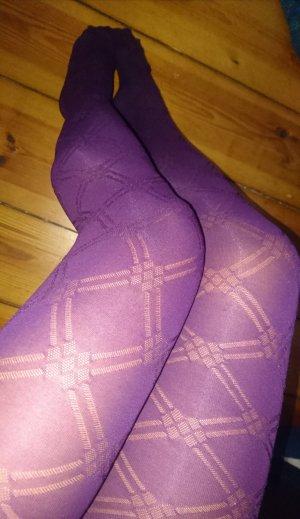 Braguita rojo zarzamora-púrpura
