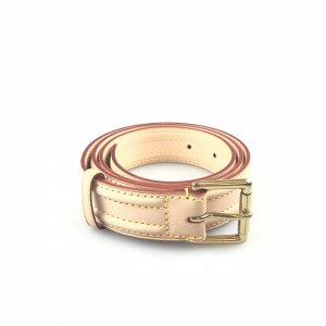 Beige Louis Vuitton Belt