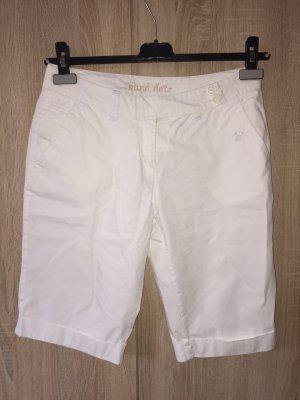 Bermuda - Shorts
