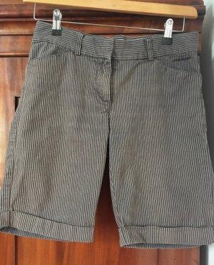 Bermuda Shorts von Dickies