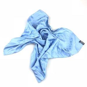 Blue Hermes Scarf