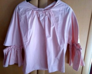 Zara Blouse Top pink