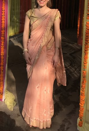 Bollywood Saree aus Delhi