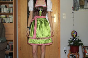 Country Line Dirndl brown-green